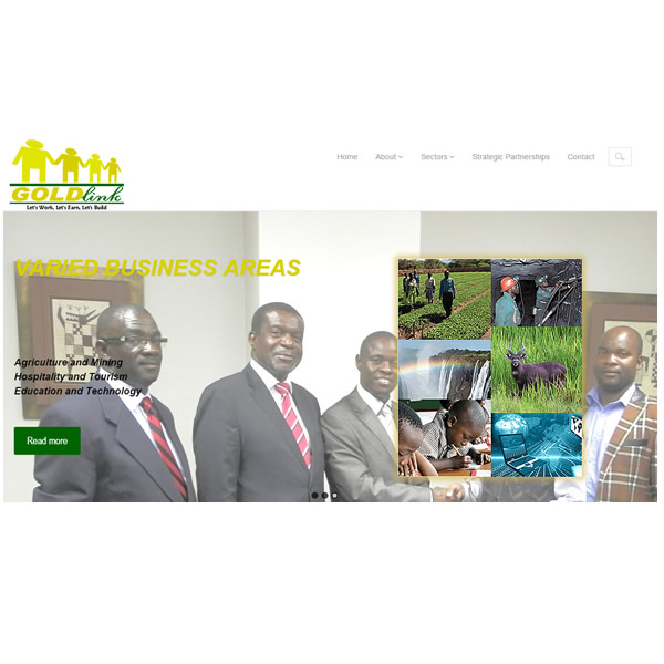 Website development and hosting, and domain registration for Goldlink Equities Ltd., Lusaka, Zambia