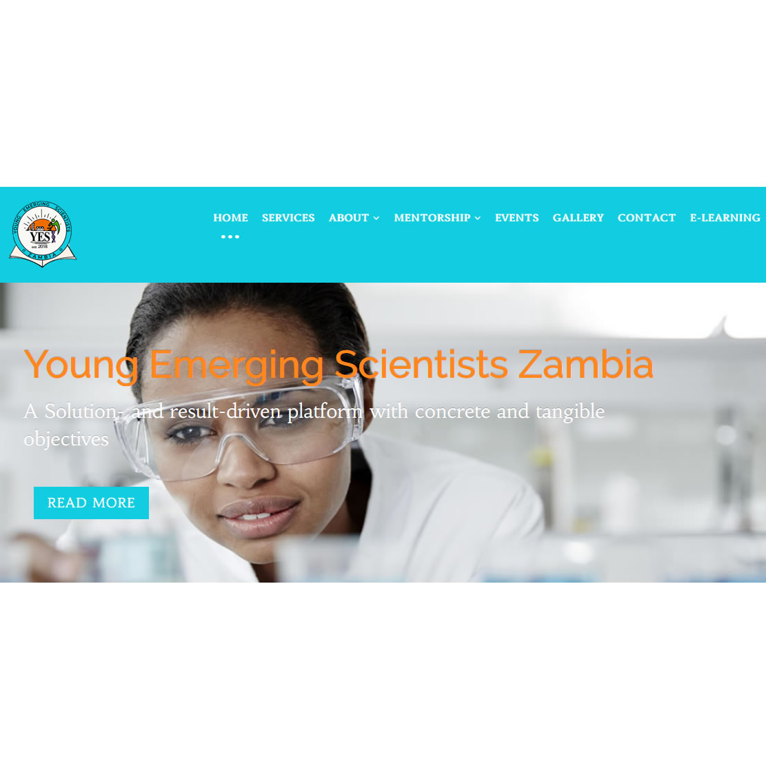 Website design for Young Emerging Scientists Zambia, Lusaka, Zambia